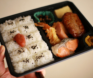 bento and japanese food image