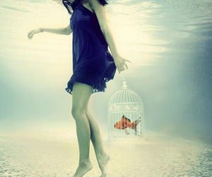 cage, fish, and love image