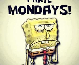 monday, hate, and spongebob image