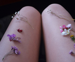 flowers, legs, and photography image