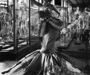 black and white, Christian Dior, and dior image