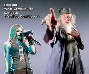 Avril Lavigne, dumbledore, and harry potter image