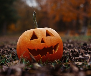 pumkin, autumn, and Halloween image