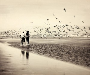 couple, bird, and beach image