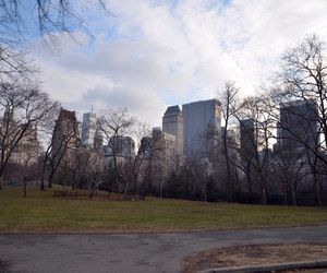 beautiful, Central Park, and new york city image