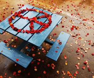 peace, red, and flowers image