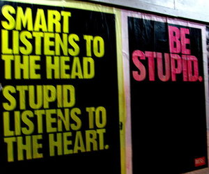 heart, stupid, and smart image