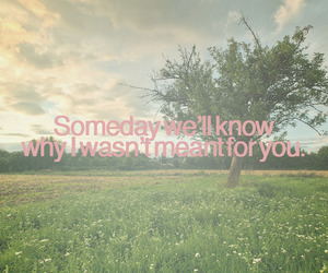 someday, quote, and text image
