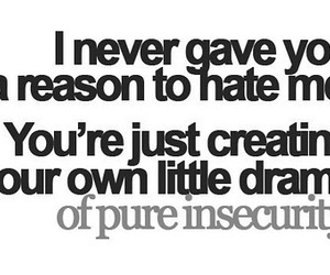 drama, hate, and insecurity image