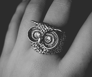 owl, ring, and black and white image