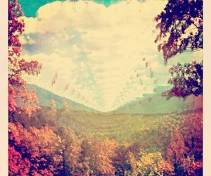 acid, indie, and nature image
