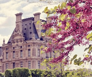 blossoms, chateau, and springtime image