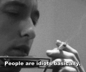 idiot, people, and quote image