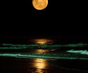 moon, night, and beach image