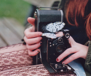butterfly, girl, and camera image