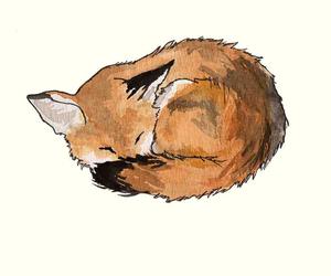 animal, illustration, and aquarelle image