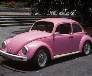car, pink, and beetle image