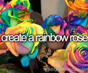 before i die, dreams, and flower image