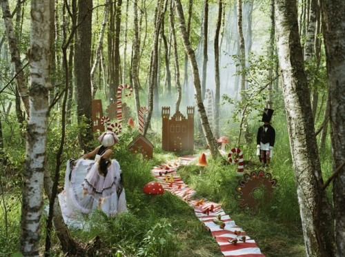 fairytale, forest, and fairy tale image