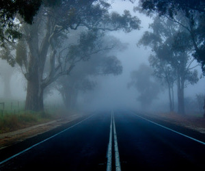 fog, photography, and road image