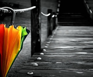 umbrella, rain, and photography image