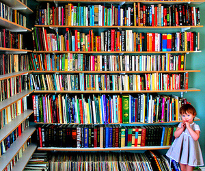 book and shelf image