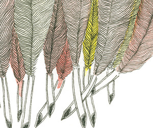 drawing, feather, and feathers image