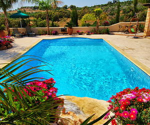 summer, pool, and flowers image
