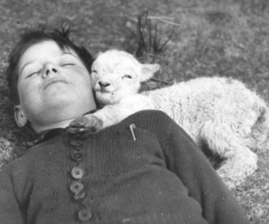 boy, lamb, and black and white image