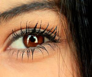 brown, eyes, and girl image