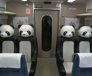 panda, japan, and train image