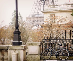 paris, bike, and eiffel tower image