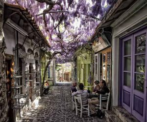 Greece, purple, and flowers image