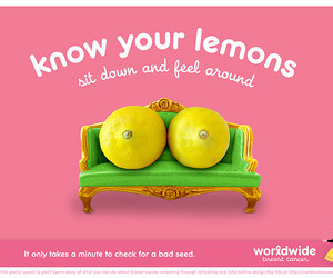 breasts, campaign, and lemons image
