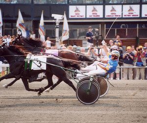 harness racing image