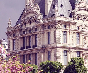paris, flowers, and architecture image