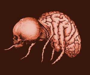 mental parasite and offermoord image
