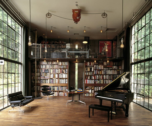 bookcase and cage windows image
