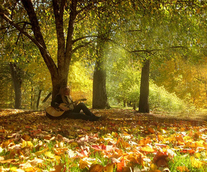 alone, autumm, and blonde image