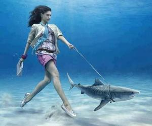 shark, girl, and underwater image