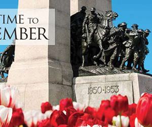 poppy, remember, and remembrance day image