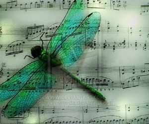 music and dragon fly image