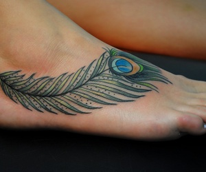 ankle, color, and peacock image