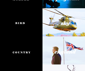 007, bird, and done image