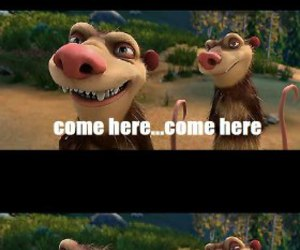 ice age, stupid, and funny image