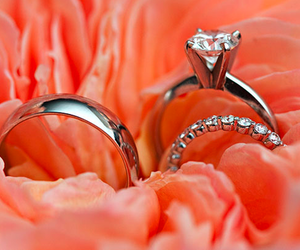 ring, rings, and pink image