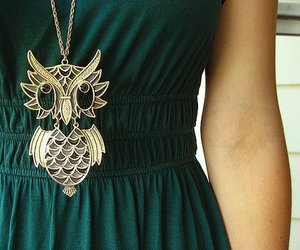 owl, necklace, and green image