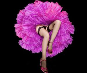 legs, dancer, and flower image