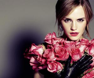 emma watson, rose, and harry potter image
