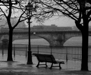 bench, black and white, and city image